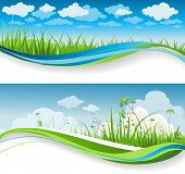 Summer grass banners