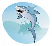 stock photo of jaw drop  - Shark on the sea background - JPG