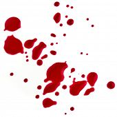 Splattered blood stains on a white background