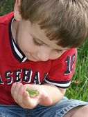 Collin With Frog4