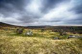The Nine Maidens Stone Circle On Dartmoor