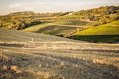 Tuscan Countryside At Sunset Near Montepulciano