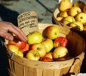 Organic Apples