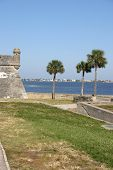 Old Fort And Palm Trees