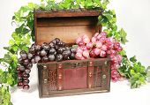 Grape Chest
