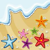 summer background with sea stars