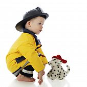 Profile of a baby fireman squatting in front of his toy fire dog.  On a white background.