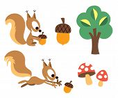 Squirrel & acorn design elements set