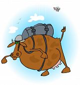 Cow skydiver