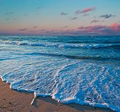 Sea Foam And Foreshore