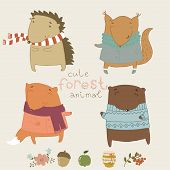 Cute animals living in the forest.