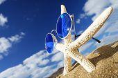 Groovy Starfish