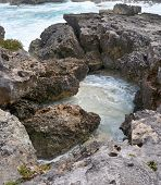 Coral rock surrounds tide pool