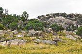 Countryside Around Tenterfield In Australia