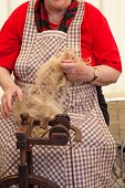 image of matron  - Photo of a elderly woman that spinning wool