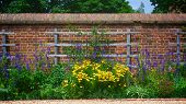 Flower Garden Wall With Trellis