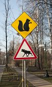 Road Signs In A Park