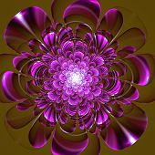 Beautiful Purple Flower On Brown Background. Computer Generated Graphics.