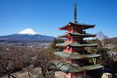 Mountain Fuji in spring season , view from chureito pagoda
