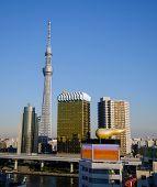 TOKYO, JAPAN - NOVEMBER 21, 2013: Tokyo Sky tree November 21, 2013 in Tokyo, Japan