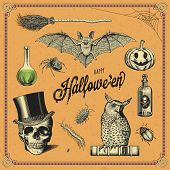 set of hand-drawn Halloween design elements
