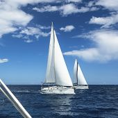 Sailboats participate in sailing regatta.