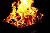 Bonfire in brazier