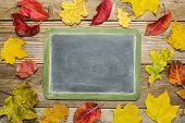 blank slate blackboard against rustic weathered wood planks with colorful dried leaves