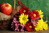 Beautiful chrysanthemum with apples in basket on wooden background