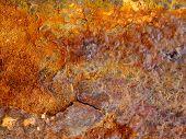 Rusted Metal Sheet Closeup