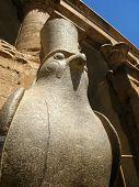 Statue Of Egyptian God Horus Inside Edfu Temple, Egypt