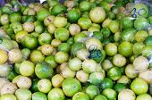 group of Lime on the market