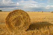 Haystack After Harvest