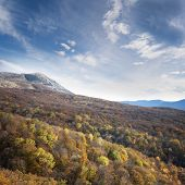 Colorful Autumn Forest Under Blue Sky With Clouds