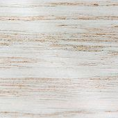 Vector light wood texture