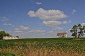 Church in bean field