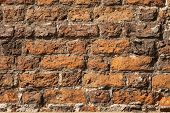 picture of mortar-joint  - red old bricks wall or construction background - JPG