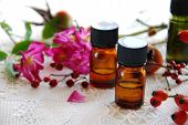 essential oils with rose hips