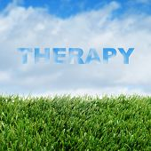 closeup of grass over the sky with clouds and the word therapy