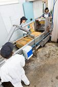High angle view of beekeepers working on honey extraction plant in factory