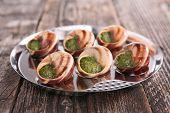 image of escargot  - french gastronomy - JPG