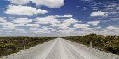 Remote Dirt Road