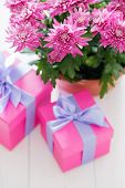 Composition of pink flowers and gift boxes