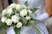 picture of white roses  - A bride holds her bouquet of white roses - JPG