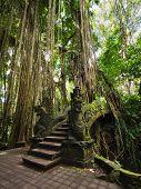 Bridge At Monkey Forest Sanctuary In Ubud, Bali, Indonesia