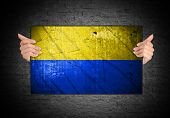 Hand Holding Flag Of Ukraine