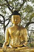 picture of siddhartha  - Statue of lord Buddha in a park - JPG
