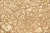 picture of drought  - Closeup of dry soil texture and Summer drought - JPG