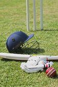 picture of cricket bat  - Cricket batting gears in a field - JPG