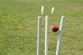 pic of cricket ball  - Cricket ball hitting stumps - JPG
